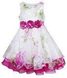 HA41 Girls Dress Tulle Bridal Lace With Flower Detailing Wedding Size 4 Years