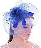 Big Feather Women Fascinator Polka Dot Flower Mesh Net Hair Clip Hat Derby Cocktail(Royal Blue)