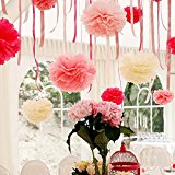 Cowboycool Set of 5 Tissue Pom Poms Hanging Paper Flower Balls Blossom for Wedding Party Bridal Shower Nursery Decoration