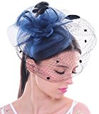Elegant Flower Polka Dot Mesh Net Veil Feather Fascinator Hair Clip Hat Wedding Cocktail(Navy)
