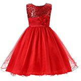 Arrowhunt Little Girls Sequin Mesh Sleeveless Flower Party Wedding Gown Bridesmaid Tulle Dress Red