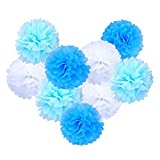 eBoot Tissue Paper Pom Poms Flower For Wedding Party Decoration, 10 Inch, Pack of 9