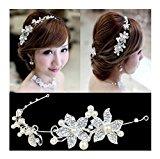 Calcifer® 1pcs Handmade Crystal Rhinestone+ Pearls Headdress Bridal Wedding hair accessories Headwear Headpiece Head Flower (White)