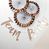 Ginger Ray Team Bride Classy Rose Gold Hen Party Backdrop Banner Decoration - Team Bride